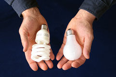 comparing two light bulb products